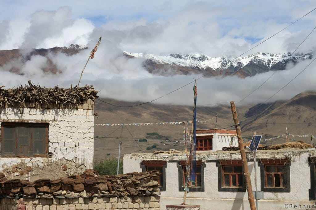 Trek au Zanskar en Himalaya - Village zanskari - séchage des bouses de vaches