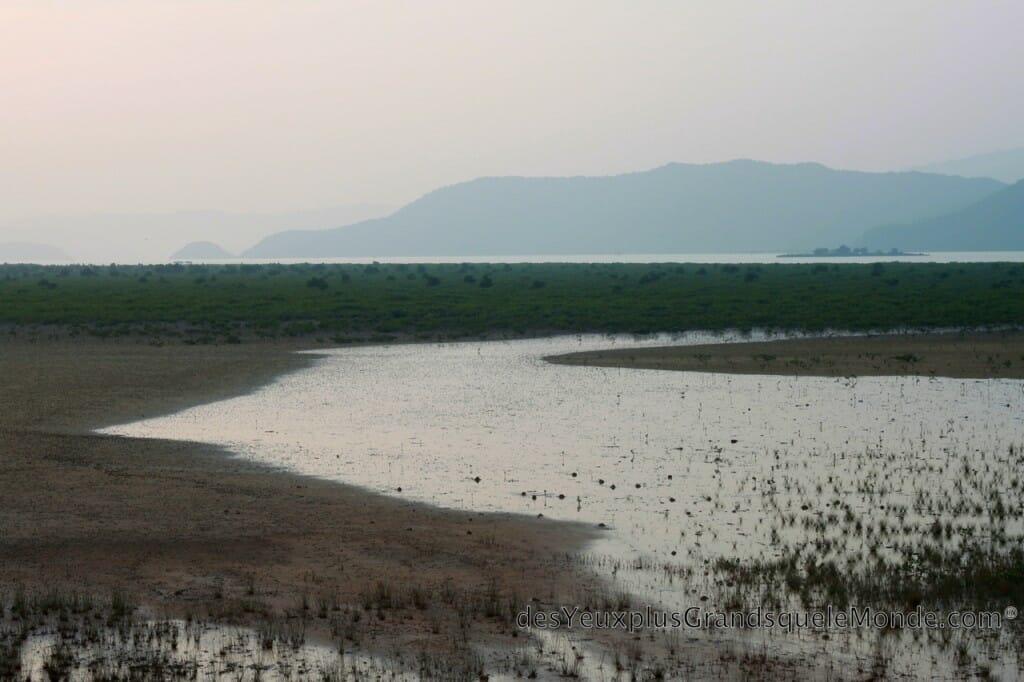 Point de vue d'une plage de Quan Lan