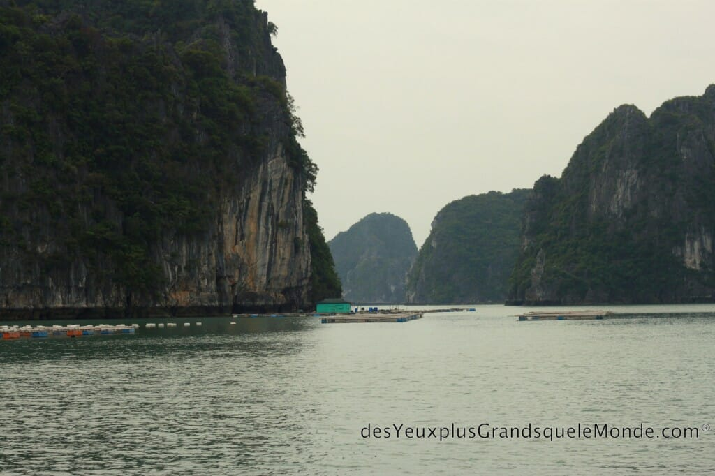Baie d'Halong - Tu Long Bay en bateau