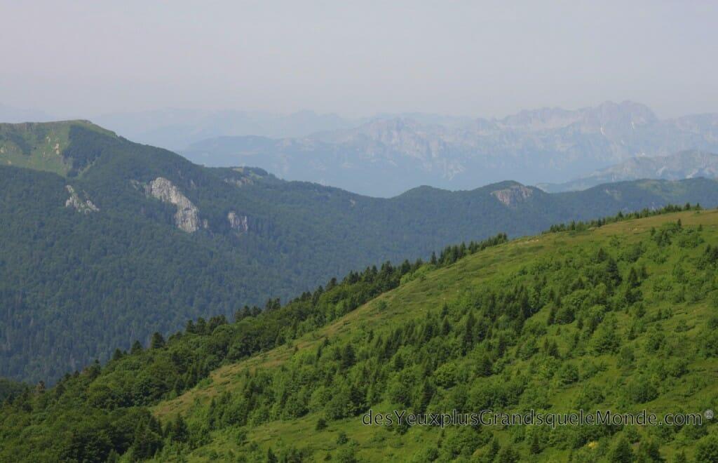 Randonner dans le Parc Biogradska Gora au Monténégro - En haut de Bolovac
