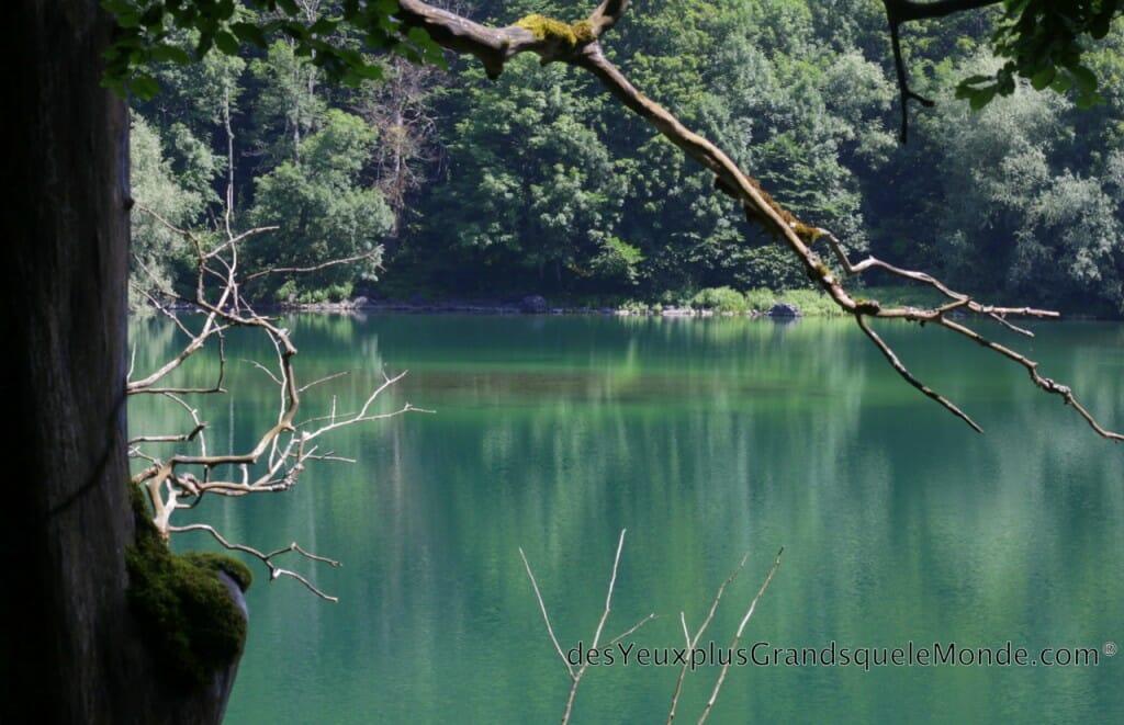 Randonner dans le Parc Biogradska Gora au Monténégro - Lac à l'entrée du Parc
