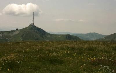 Sur les hauteurs du Parc Biogradska Gora au Monténégro