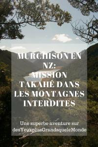 Murchison en NZ _ mission Takahé dans les montagnes interdites
