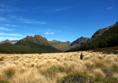 Paysage de la vallée de Murchison, ile interdite de Nouvelle-Zelande