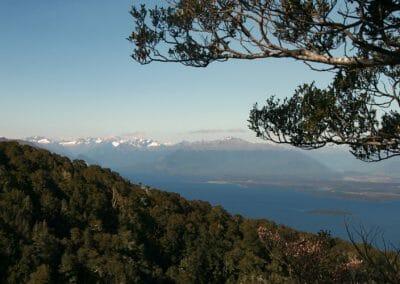 Vue des hauteurs de l'ile de Murchison en Nouvelle-Zelande