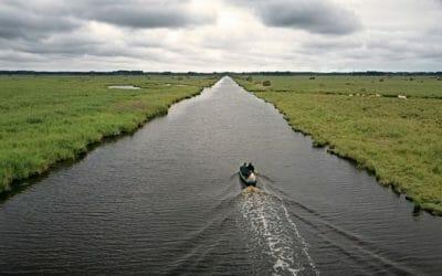 Balade dans le Parc Naturel Régional de la Brière - en bateau