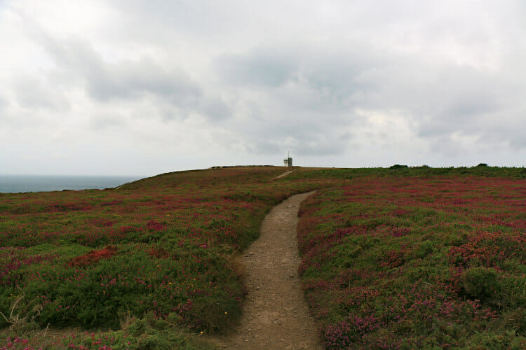 Randonnée autour de la Presqu'ile de Crozon - Cap de la Chèvre