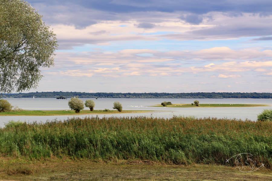 Lac du Der - Destination nature