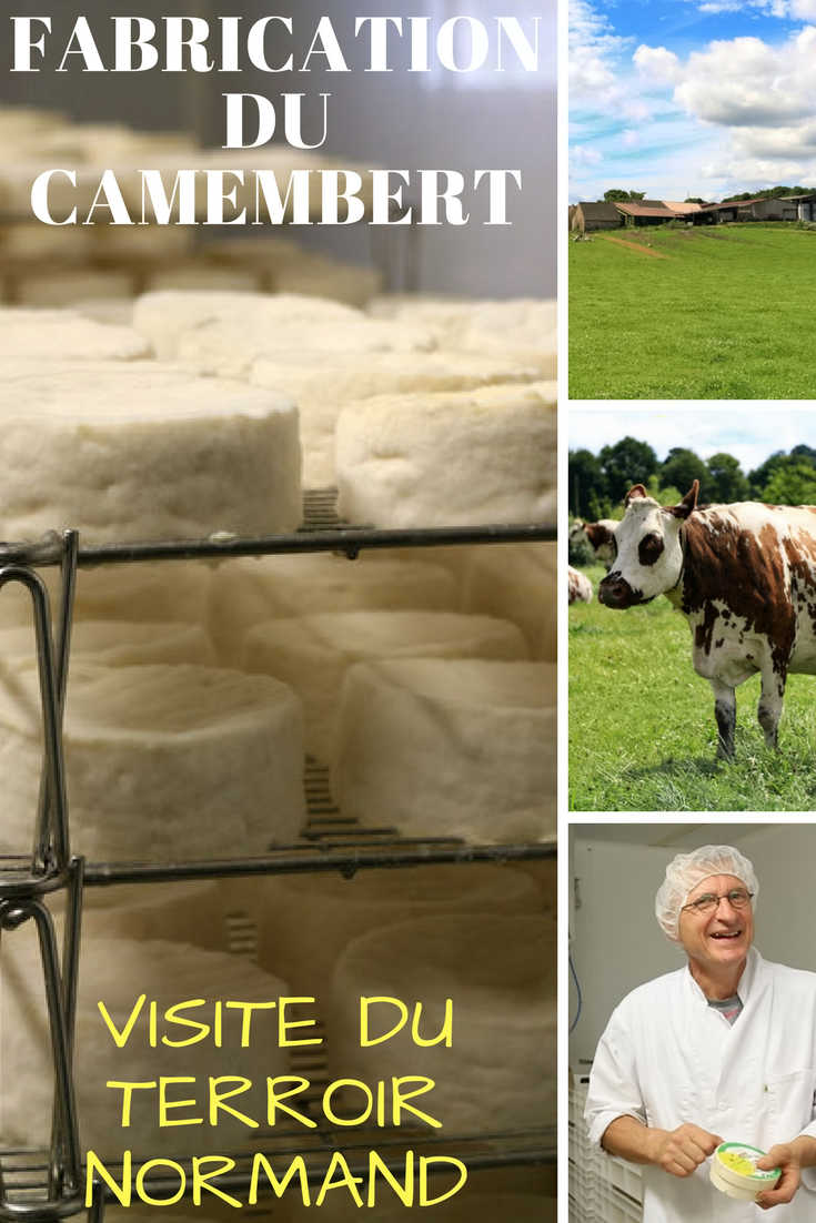 Fabrication du camembert : visite de la ferme du Champsecret