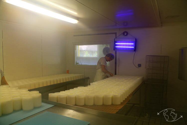 Fabrication du camembert - Salle de moulage