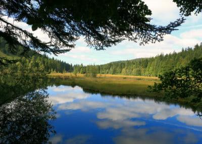 Autour de Corcieux - Lac de Lispach