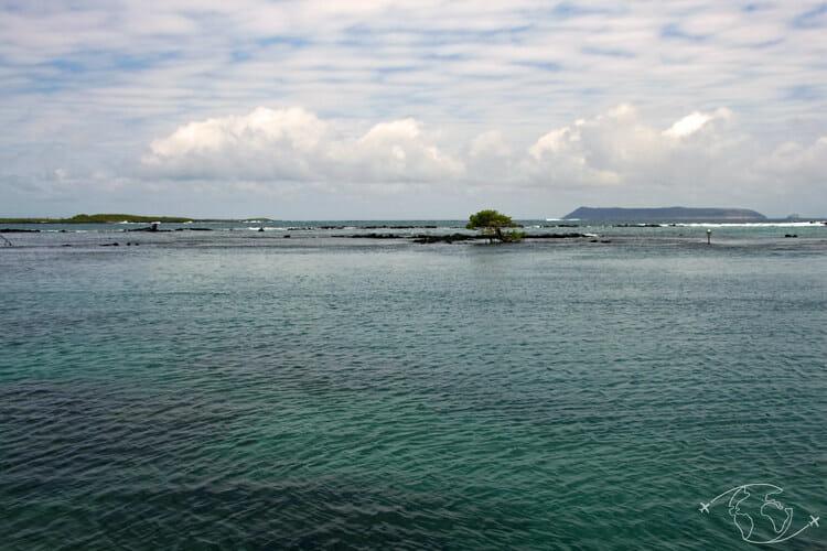 Visiter les Galapagos - Paysage d'Isabela