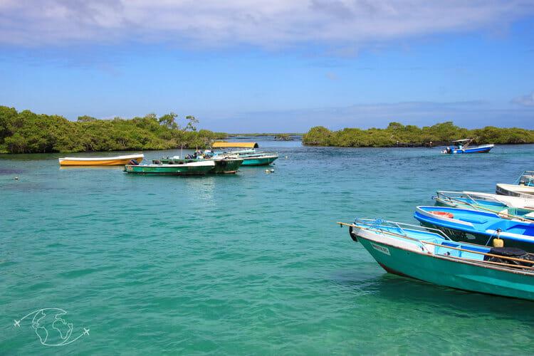 Visiter les Galapagos - Port de l'île Isabela