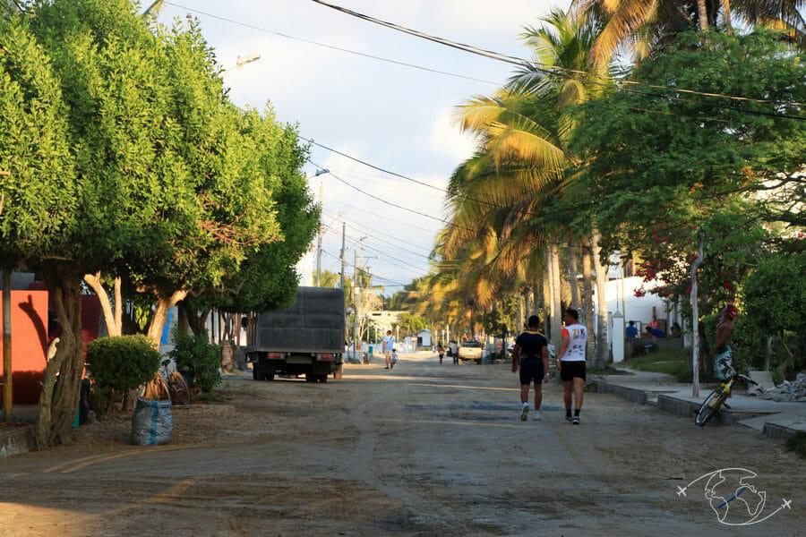 Les Galapagos - Puerto Villamin - île Isabela