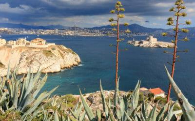 Îles du Frioul : une visite incontournable à faire sur Marseille