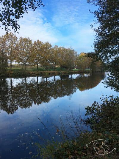 Randonner en Deux-Sèvres - Sur les bords de la Sèvre près de Niort