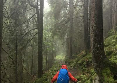 Tour des Dents Blanches - Dans la forêt sous le Pas d'Encel