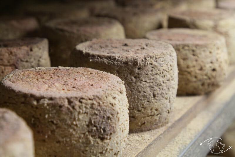 Visite de ferme en Lozère - Fromage aux artisous
