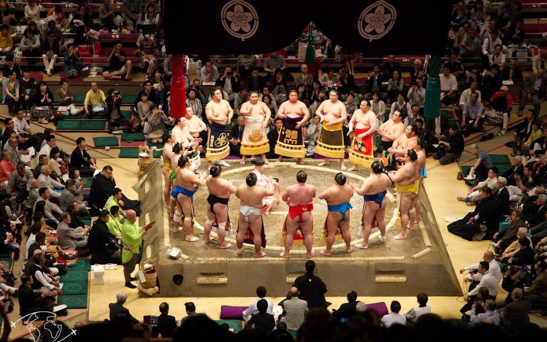 Sumo à Tokyo - Présentation des concurrents