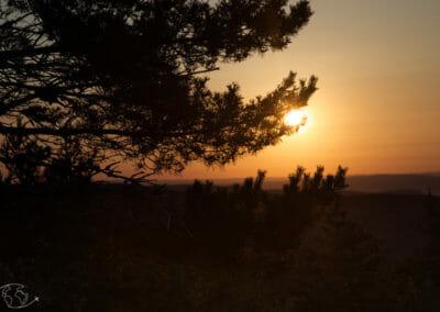 Chemin de Stevenson - Coucher de soleil sur le Mont Lozere