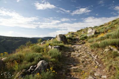 Chemin de Stevenson - De Pont de Montvert direction Florac