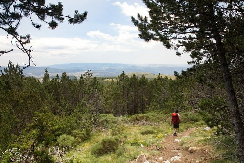Chemin de Stevenson - Du Mont Lozère à Finiels
