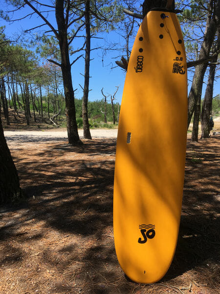 Ecole de Surf - Ma planche de surf