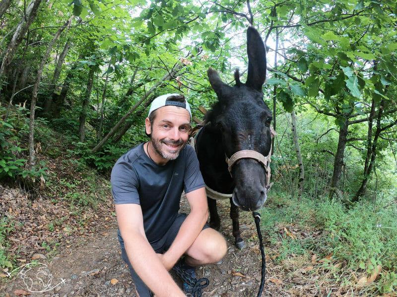 Randonnée en France - Pablo et moi sur le chemin de Stevenson