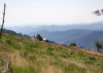 Chemin de Stevenson - Paysage des Cévennes