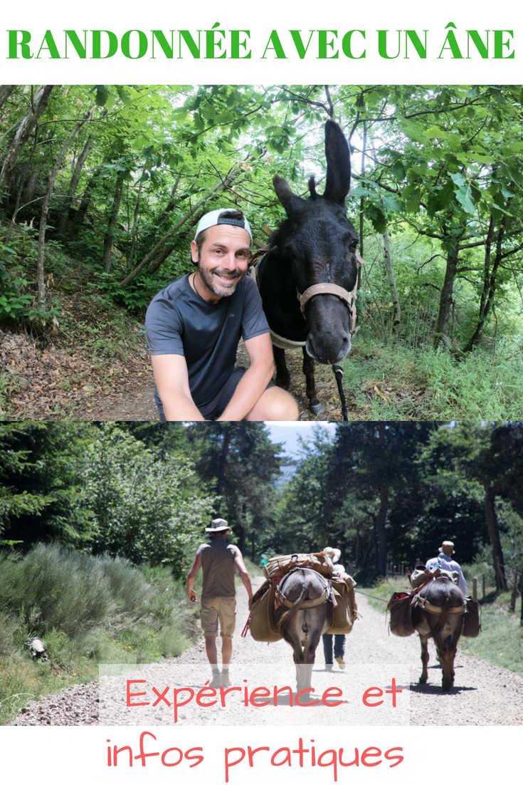 Randonnée avec un Ane : mon Expérience sur le Chemin de Stevenson