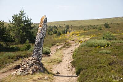 Chemin de Stevenson - Sentier sur le Mont Lozère - Vue côté sommet