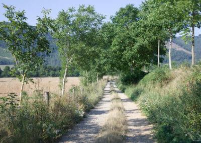 Randonnée Larzac - Entre Nant et la Cavalerie 1