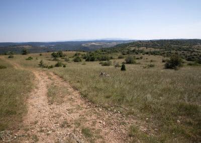 Randonnée Larzac - Plateau de Guilhaumard