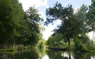 Découvrir le Marais Poitevin