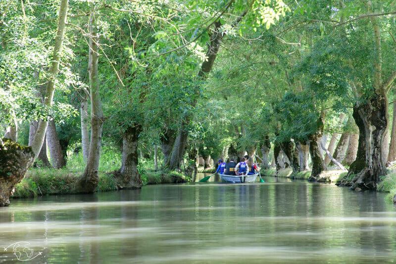 Faire de la barque près de Coulon - Marais Poitevin