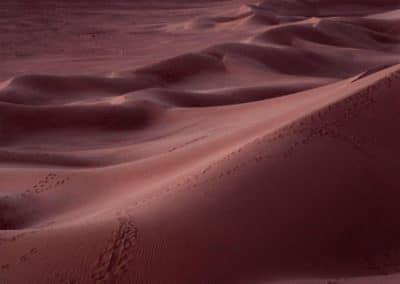 Coucher de soleil sur les dunes du Sahara
