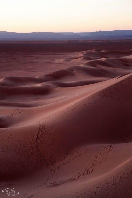 Désert du Sahara - Coucher de soleil sur les dunes du Sahara