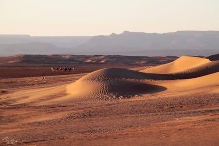 Caravane dans le Sahara