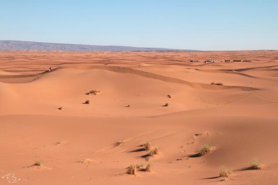 Désert du Sahara - Marche vers la dune de Chegaga