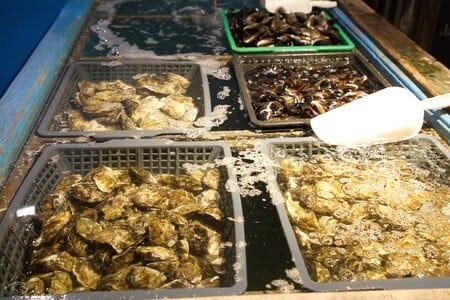 Bassin d'eau douce pour le nettoyage des fruits de mer - Port Leucate
