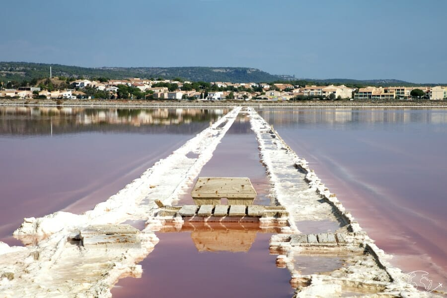 Visiter Narbonne - Salins de Gruissan - Chemin de sel