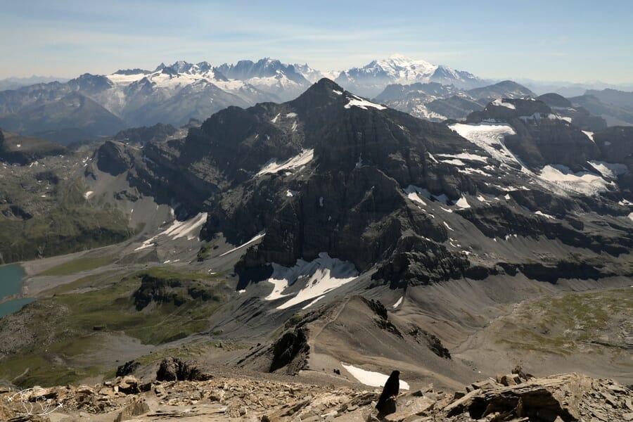 Randonnée suisse - Vue sur le Mont Blanc au sommet de la Haute Cime - Dent du Midi