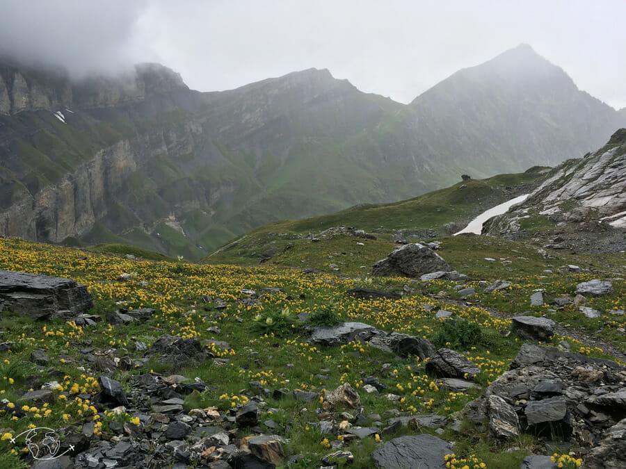 Entre le Col de Barberine et le Col d'Emaney - Tour du Ruan