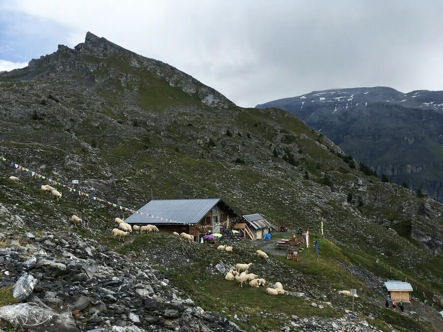 Refuge de Grenairon - Tour du Ruan