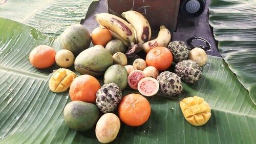 Festin de fruits - Sortie Tchak avec Nadj - Mayotte