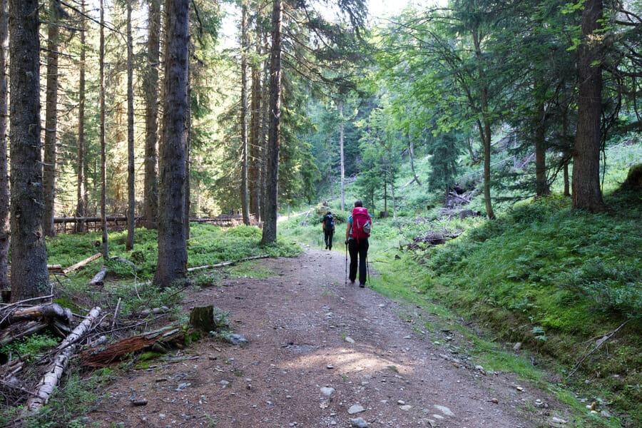 Candie et Enora dans la forêt au dessus de Vallorcine
