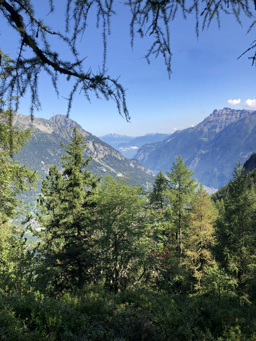 Mont de l'Arpille - Vue sur Salvan