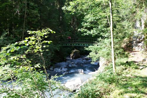 Petit pont au dessus du Trient