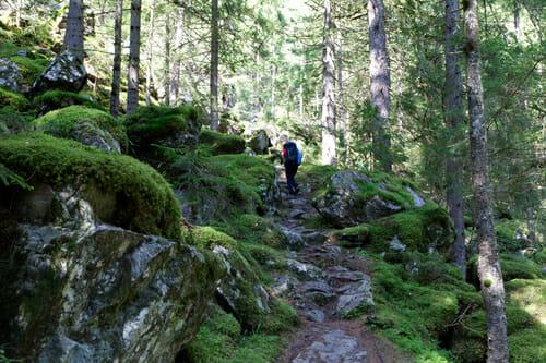 Sentier entre la Crêta et Salvan - Vallée du Trient