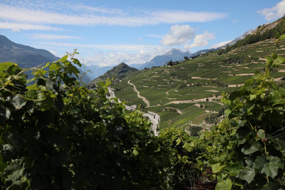 Terrasses du Lavaux - 40 min de Champéry